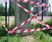 rubalise nid de guêpes frelons en Vendée